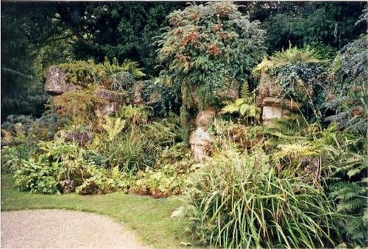 Pgds 20080610 142501 Audley End Rock Garden