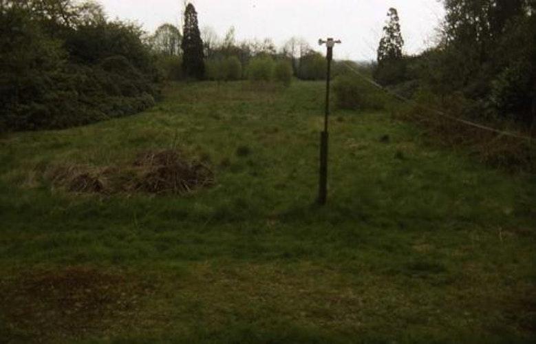 Pgds 20090123 154158 Buntingsdale Hall Site Of Formal Gardens In 1996