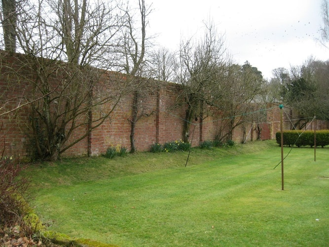 Pgds 20150116 230740 Nw Wall With Fruit Trees